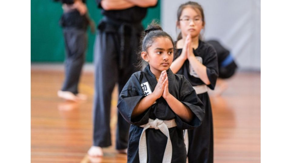 The Kung Fu School